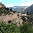 Grecia – circuit cu autocarul – Sfantul Paisie Aghioritul – optional croaziera Muntele Athos – […]
